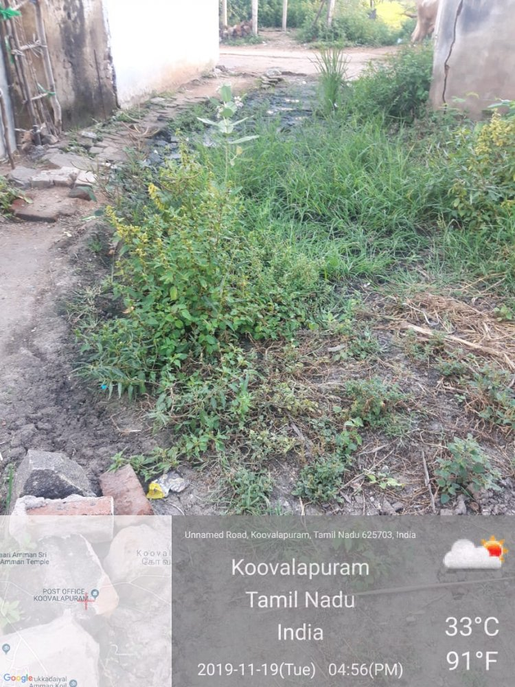 சுகாதாரமற்ற நிலையில் உள்ள கிராமம், கிராம மக்களின் கோரிக்கைகளை ஏற்காமல் சுகாதாரத் துறை அலட்சியம்